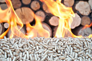 Biomass Handling - Adair Bulk Solutions