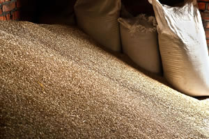Grain Storage & Handling - Consult VIA