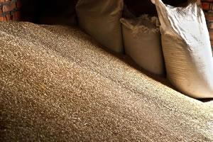Grain Storage & Handling - Adair Bulk Solutions